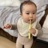 歯医者デビュー!1歳の娘が歯医者に行ったレポ。歯が生えてきたら歯医者さんに行こう