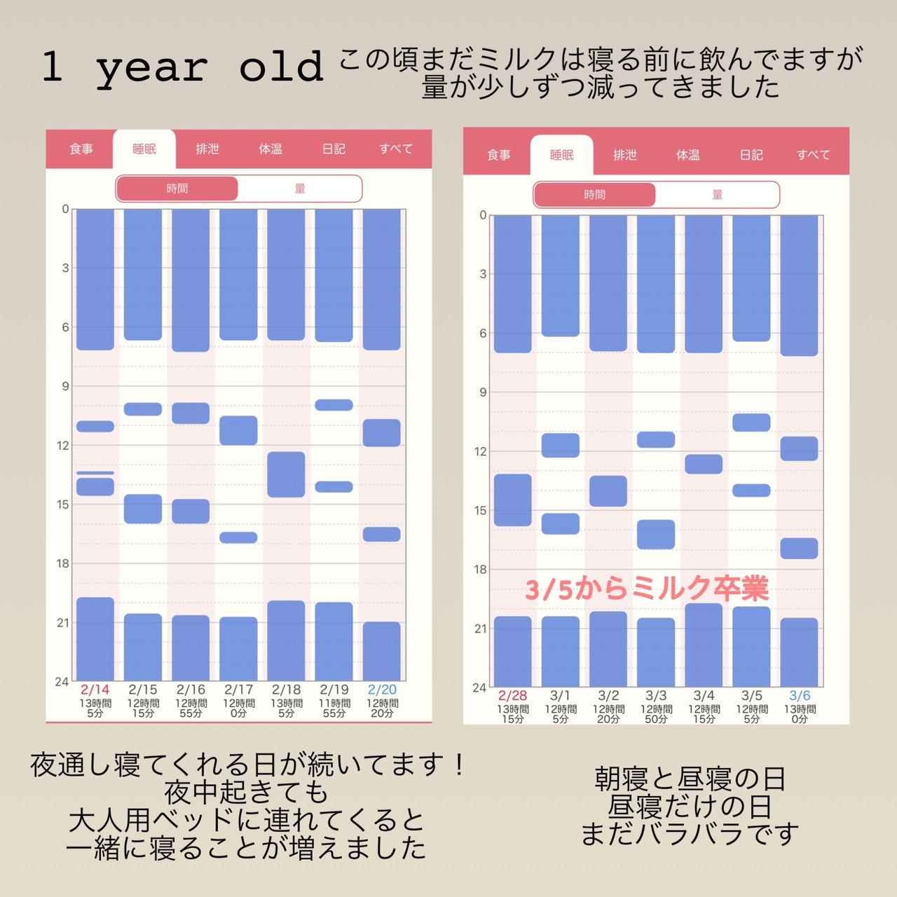 12ヶ月の睡眠記録